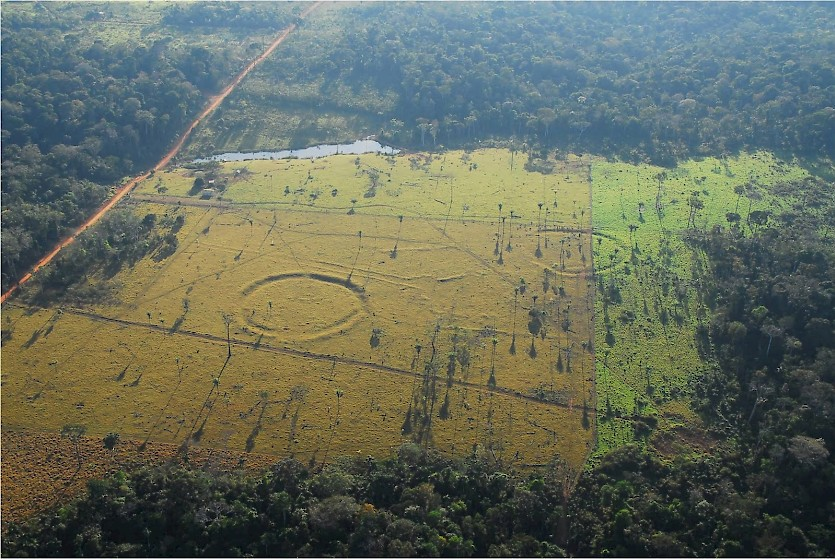 Geoglyphs between 1,000 and 2,000 years old have been discovered in the Amazonian region of Pará in Brazil since the 1970s as a result of increasing deforestation.