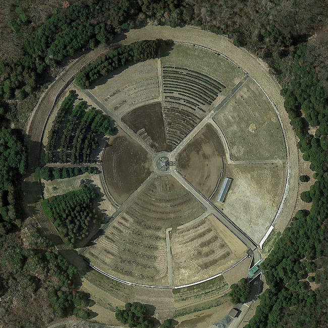Gamma field in Ibaraki, Japan. Photo: Google Earth.